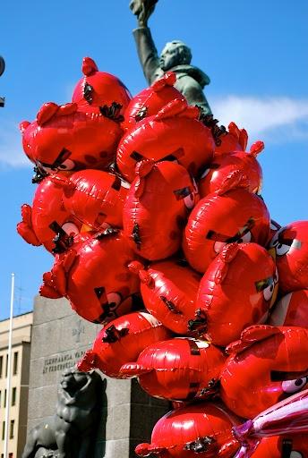 Big Red Birds