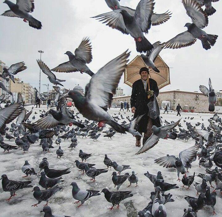Istanbul  ve  kar  Foto  Mustafa Seven