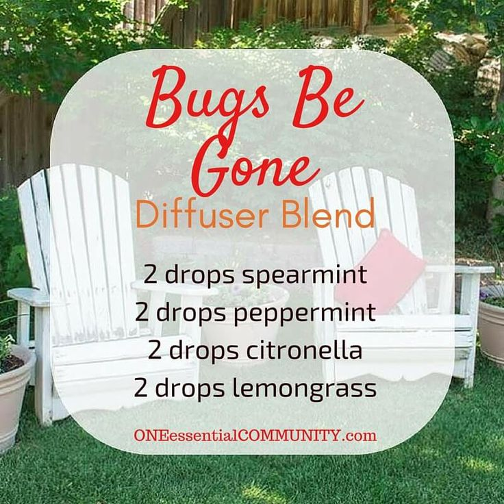essential oil diffuser blend to keep those summer bugs away (spearmint, peppermint, citronella, and lemongrass)