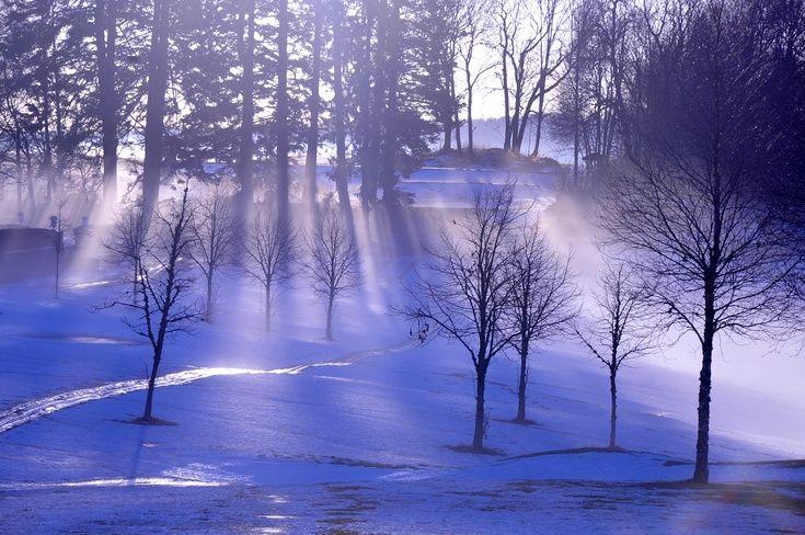 ARTFINDER: Sun Rays on a Winter Day by Randi Grace Nilsberg -