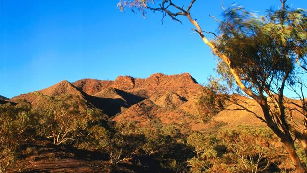The mountainous northern end of the Heysen Trail, Parachilna Gorge. Northern Guidebook maps 6.7, 6.8