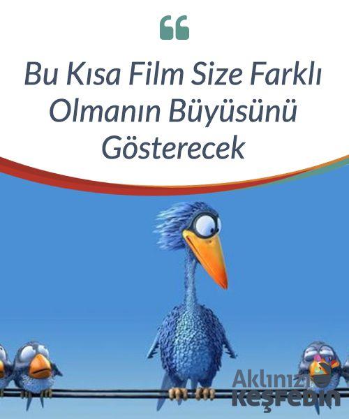 """Bu Kısa Film Size #Farklı Olmanın Büyüsünü #Gösterecek  """"For the Birds"""" (Kuşlar İçin), harika bir kısa film. #Eğlenceli birkaç dakika içinde on beş sinir bozucu, #minik kuşla tanışacaksınız. Sizi gülümsetecekler. Özellikle de biraz tuhaf bir #kuşla karşılaştıklarında."""