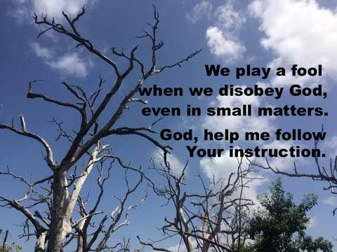 fools despise wisdom and instruction
