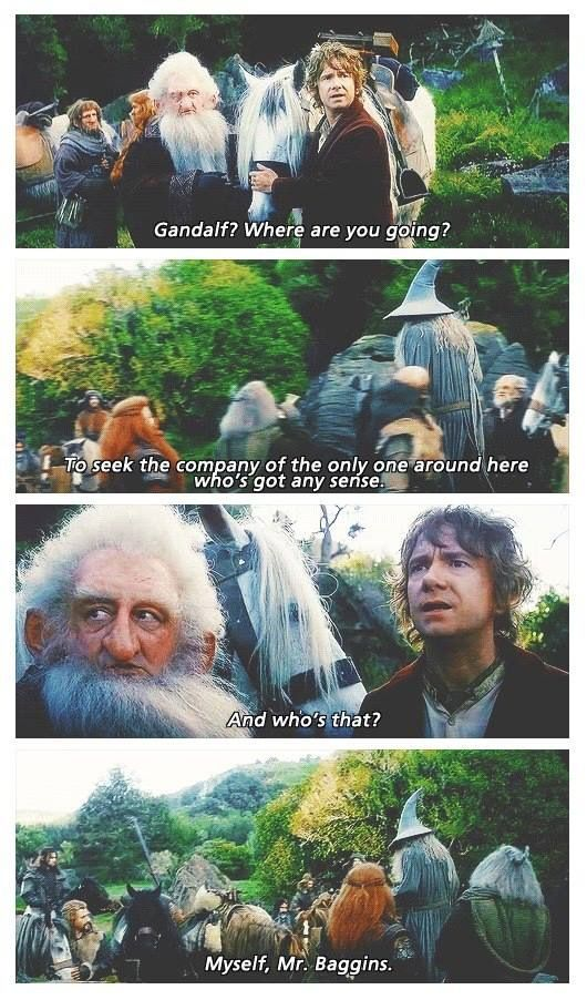 "The Hobbit: An Unexpected Journey | ""...the only one around here who's got any sense...""<<< I've decided that I'm just going to start using this in everyday life whenever anyone asks me where I'm going"