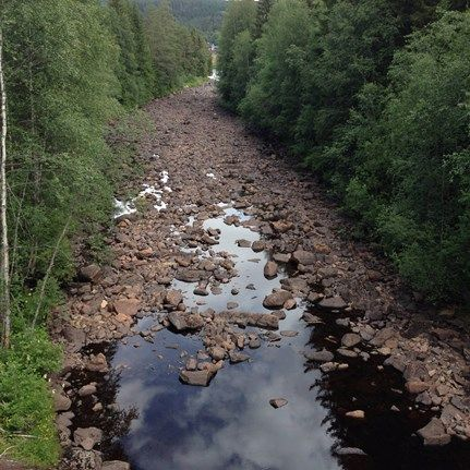 - River -  Linnea Kruslock