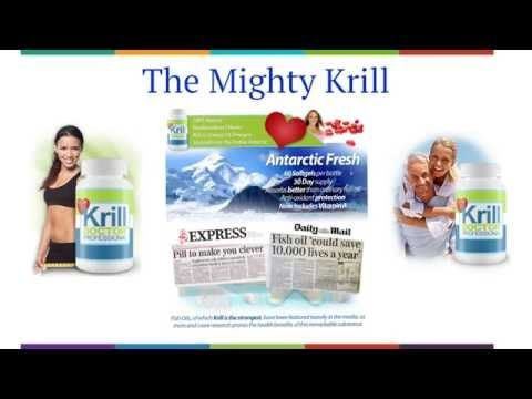 http://eliteproductreview.com/krill-oilKrill Oil ReviewWhen you're trying to drop weight, a lot effort and time enters into arranging your diet, special dishes, in addition to the aches as well as discomforts of extended massive exercise as well as missing out on your favourite foods.- A MASSIVE 1200mg of expert toughness krill oil means you'll feel the perks within merely 2 weeks!- Krill Doctor Professional Krill Oil is very abundant in omega Fours with EPA as well as DHA acids, protective…