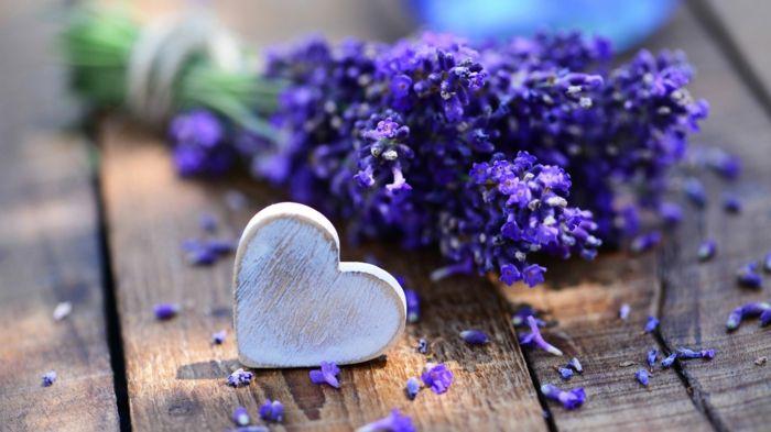 Lavendel und Herz aus Holz, Hintergrundbild in Lila, Natur spüren und genießen, schöner Blumenstrauss