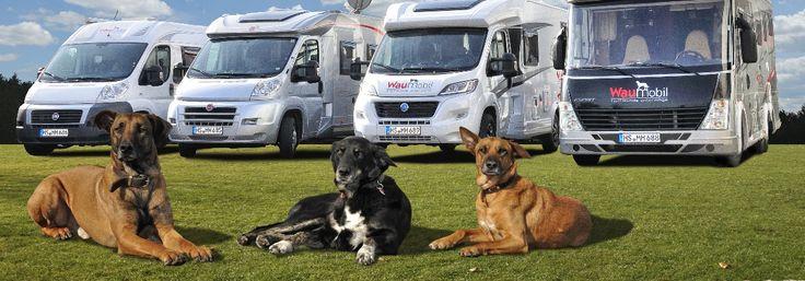 Wollen Sie ein Wohnmobil mieten mit Hund? Mieten Sie ein Waumobil, dann wird Ihr nächster Urlaub mit Ihrem vierbeinigen Freund zum tierischen Vergnügen.