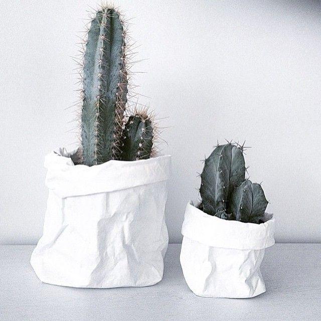Uashmama washable paper plant covers and cactus