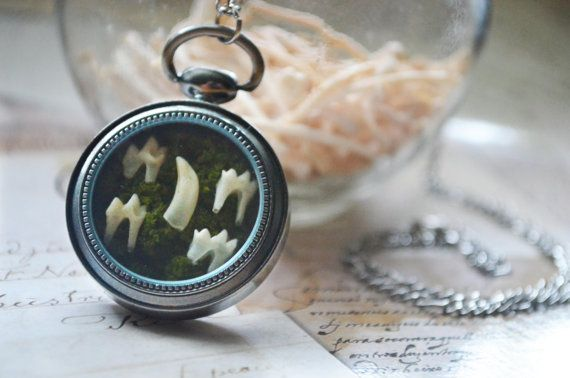 Pocket Watch Terrarium Pendant with Moss and Squirrel Teeth made by Heather Clark