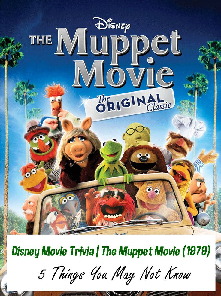 Interesting Disney Movie Trivia for The Muppet Movie (1979) 5 Things you may not know about the Muppets we all love and follow!
