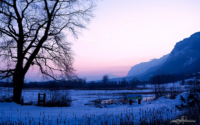 Day Fifty Five by Julien Perri Photographie, via Flickr  https://www.facebook.com/JPPhotographie