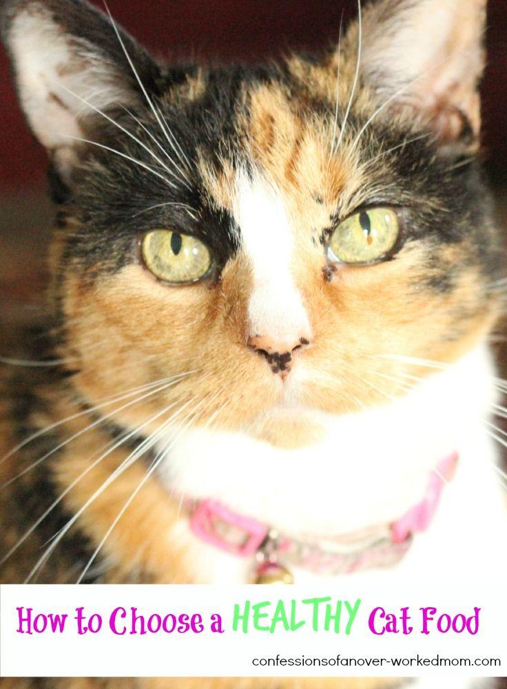 Choosing a Healthy Cat Food #PawNatural #sponsored