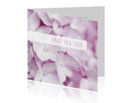 #Moderne #rustige #rouwkaart met #roze #hortensia #bloemen.  #kwaliteit #duurzaam #nietduur #snellelevering #weekenddruk