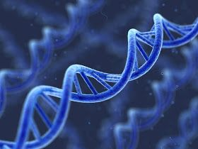 Scientists Have Found That Memories Can Be Passed Down Through Generations In Our Genes saying it's a possible explanation for phobias. Could our DNA be carrying spiritual and mystical memories passed down in genes from the experiences of our ancestors?  Does something such as spiritual evolution find its way into the genetic sequence and carry over into the next generation?