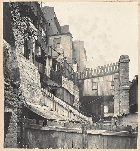 At rear of Gloucester-street, from Views taken during Cleansing Operations, Quarantine Area, Sydney, 1900, Vol. V / under the supervision of Mr George McCredie, F.I.A., N.S.W. photographed by John Degotardi Jr. | Flickr - Photo Sharing!