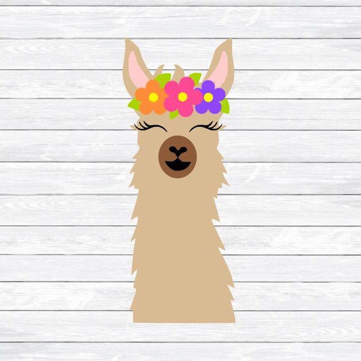 Pin by Allison Weir on Silhouette Stuff | Llama face, Llama