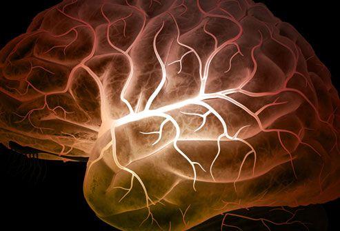 Epilepsy Treatment Options