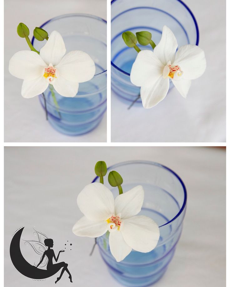 Phalaenopsis orchid on hair pin made from cold porcelain