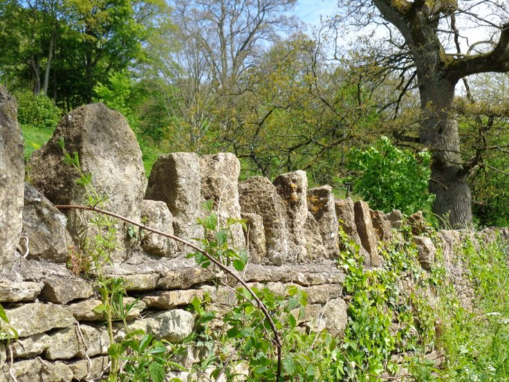 The beautiful dry stone walls of Somerset and Wiltshire in Spring