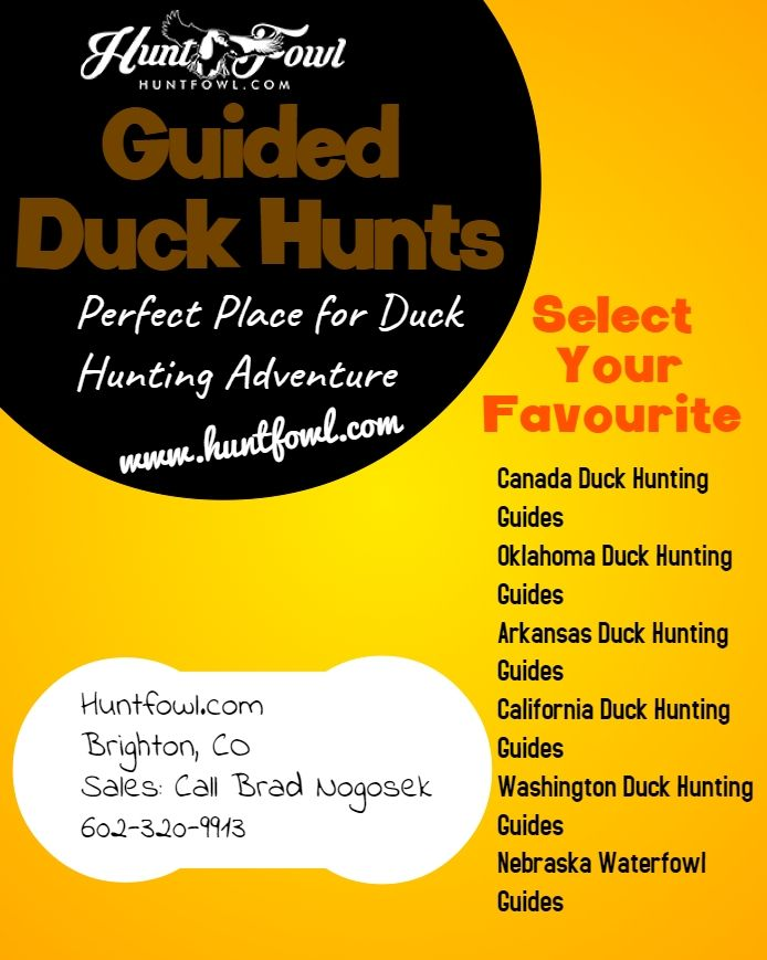 Get a perfect place in USA & Canada for Duck hunting guides