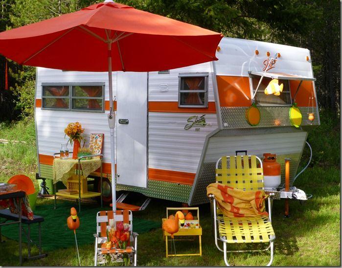 Orange and yellow Shasta