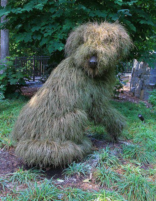 Dog Plant Sculpture. peut-etre une solution pour faire peur aux chats des voisins !!!
