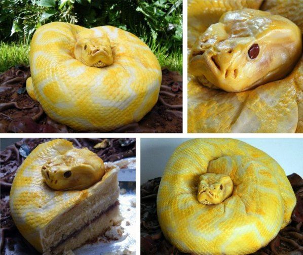Francesca Pitcher from North Star Cakes in the UK created this disturbingly realistic Burmese python cake for her daughter's birthday. She posted it on her Facebook page and it's gone viral from there. Decorative cake guru Duff Goldman from Ace of Cakes even tweeted about it.   Nice job, but maybe too realistic. I think I just lost my sweet tooth.