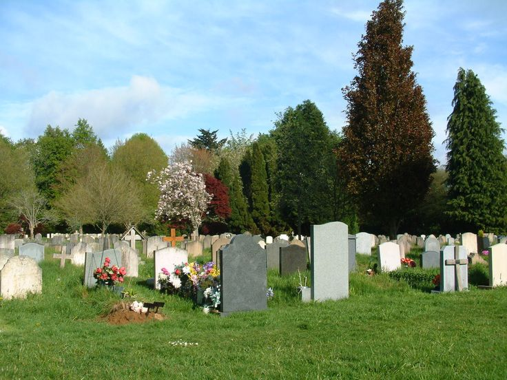 Lower graveyard in late spring.  A variety of trees and foliage colours.