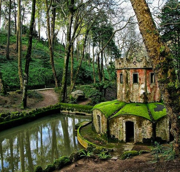 Not a tree house, but a very cool and old house in the trees. An old settlement in the Scottish Highlands.