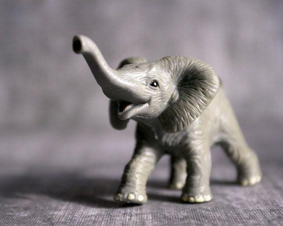 Happy Goodluck Elephant  Photograph  Various Sizes by BACLORI