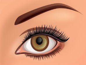 Consigue las cejas perfectas y enmarca tu rostro con esta sencilla guía. - BISSÚ COSMÉTICOS