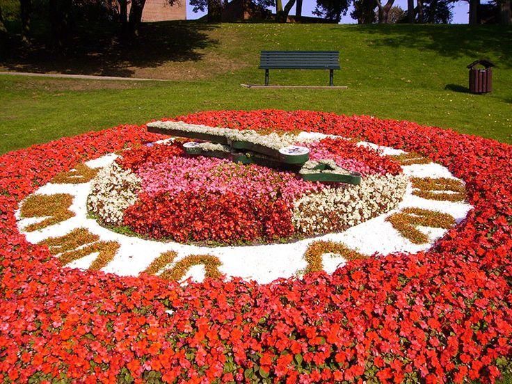 Floral Clock, Pannett Park