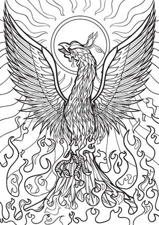 Phoenix Bird Drawing 5coloring Pages Phoenix Bird Dragon