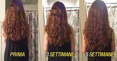 shampoo cipolla ricrescita capelli
