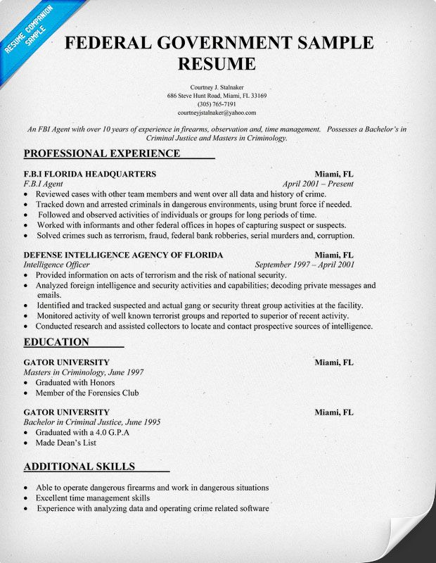 federal government resume template job format