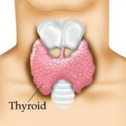 Natural Cure For Thyroid Problems - How To Cure Thyroid Problems Naturally