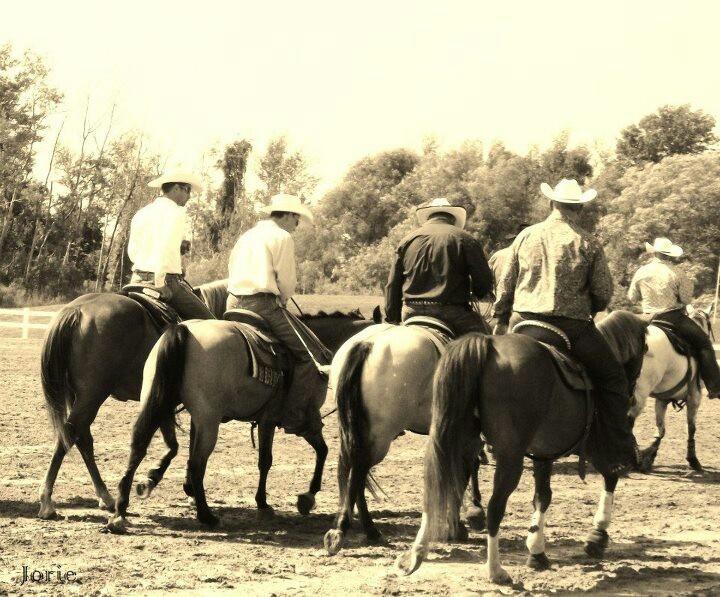 Horses, cowboys,