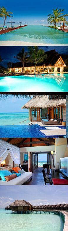 Alifu Dhaalu Atoll - великолепный тропический курорт на Мальдивах - Путешествуем вместе