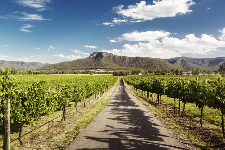 Hunter Valley wineries and restaurants are some of the best in Australia #escapesnaps