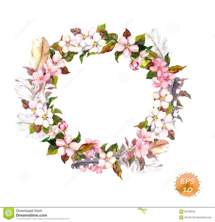 Vintage Frame - Wreath In Boho Style. Feathers And Flowers Cherry, Apple Flower Blossom. - Download From Over 45 Million High Quality Stock Photos, Images, Vectors. Sign up for FREE today. Image: 62739945