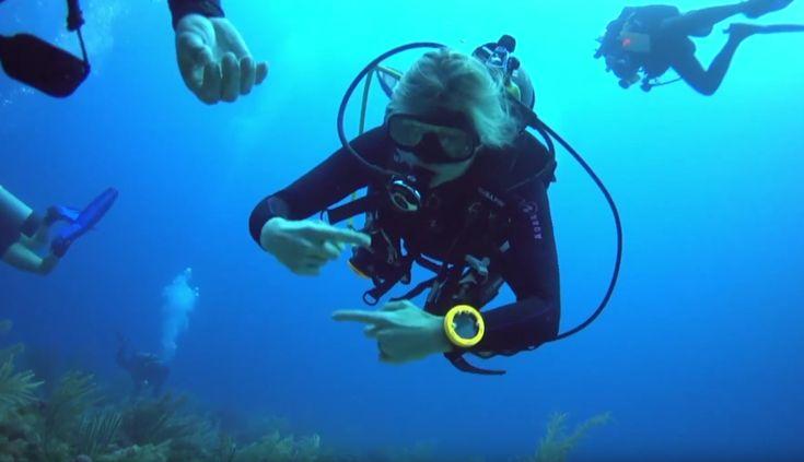 Tijdens hun bezoek aan Saba, nemen onze koning en koningin even een duik - Dit zijn de videobeelden