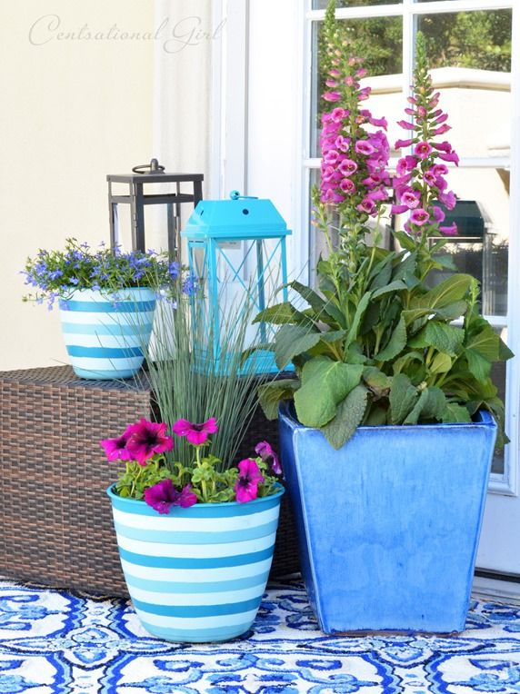 Great potted plant vignette