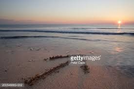 Image result for beach horizon drawing