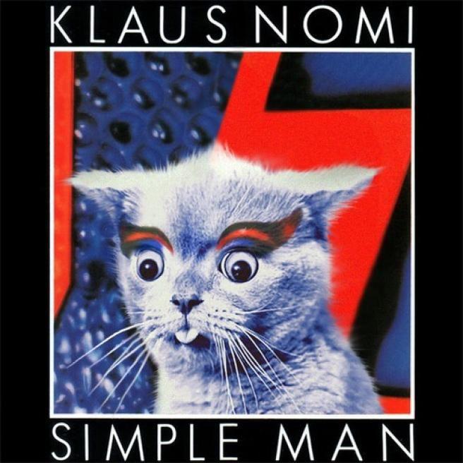 Kitten Covers, metti un gatto in copertina
