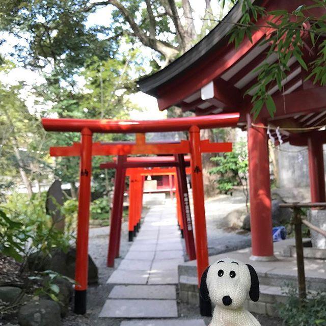 #snoopy #snoopygram #travel #travelgram #travelingram #nofilter #architecturelovers  #beautiful #Atami #photooftheday #instagood #spiritual #red #shrine #スヌーピー #熱海 #来宮神社 #来宮 #神社 #パワースポット #鳥居 #⛩ by (traveloopy). snoopy #snoopygram #travel #鳥居 #スヌーピー #nofilter #⛩ #photooftheday #spiritual #instagood #shrine #来宮神社 #architecturelovers #travelingram #来宮 #red #神社 #travelgram #パワースポット #熱海 #beautiful #atami