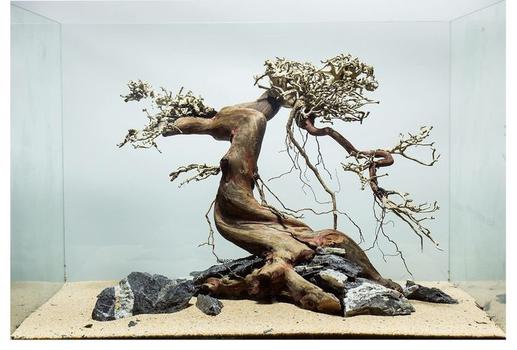 A hardscape that gives me the chills, by Obaron Aquatic.