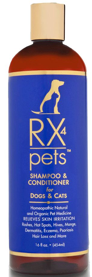 Click This Link To Order RX4 Pets Shampoo and Conditioner: http://www.amazon.com/Rx-blistering-Veterinarian-recommended-Guaranteed/dp/B00KVO3AIO/ Best Pet Shampoo to prevent and cure hair loss in dogs and cats. Natural, organic product creates anti-hair loss treatment that heals flea bites, eczema, psoriasis, hot spots, blistering and scratching from itchy and scaly skin. Veterinarian recommended amazing results. Guaranteed.