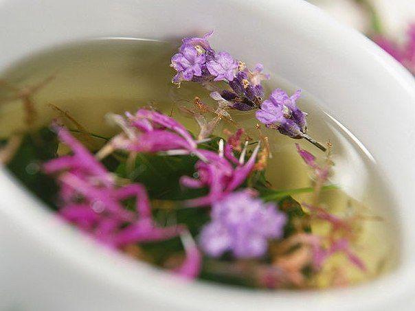 Народные средства восстановления гормонального баланса               Лечение гормонального сбоя шалфеем и гусиной лапч...