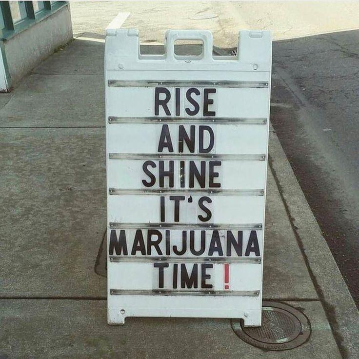 Good morning!  Less than 100 days left of 2017! What goals are you trying to accomplish by the end of the year?  #topshelflife #canadianstoners #cloudsovercanada #kusharmy #stoners #hightimes #hightimesmagazine #dopemagazine #kronic #puffpuffpass #marihuana #cannabis #cannabiscommunity #weedlife #wakeandbake #wakenbake #thc #ostf #WakeBakeCaffeinate #successfulstoner #ganja #stoners #potheads #joints #kush #acmpr #dabbersdaily #tweedledoob